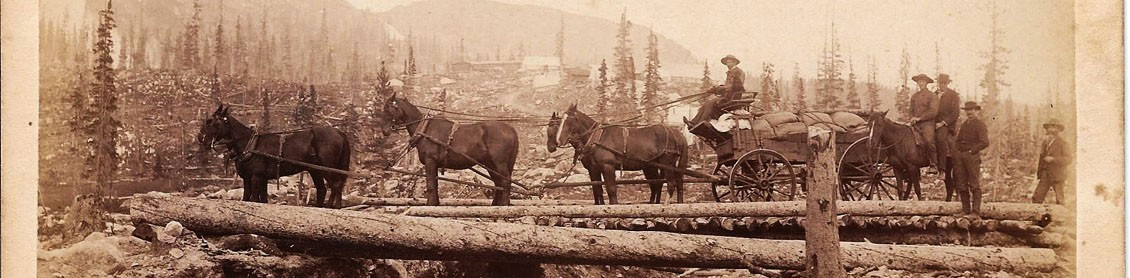 Transportation is technology: stages, railroads, burros & the horse!
