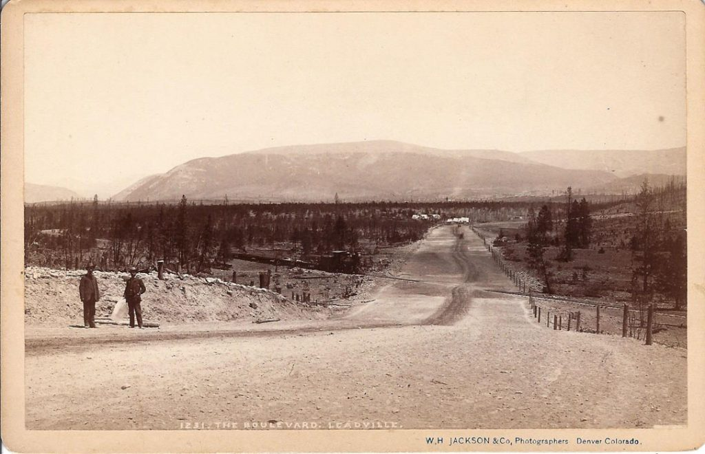 Jackson 1231 The Boulevard Leadville